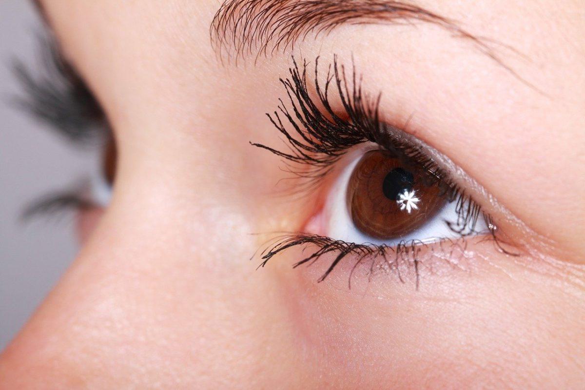 Oczy to wyrafinowany narząd. To właśnie dzięki nim doświadczamy.